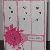 Birthday Card     TFB33