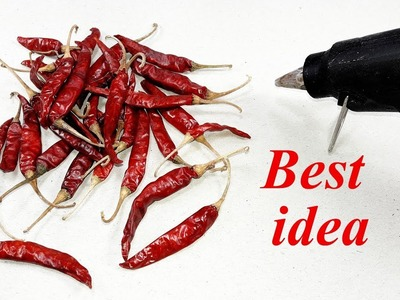 Awesome Craft Idea With dry chilli | DIY arts and crafts | best Craft Idea | Diy home deco