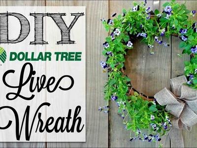 DIY Live Flower Wreath   Dollar Tree Craft