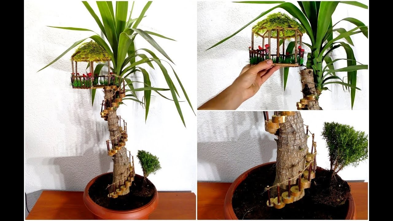 How to make a Fairy House on Yucca plant. Yucca plant decoration