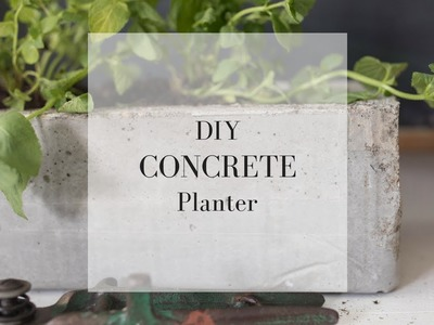 DIY Concrete Planter | CONCRETE DIY IDEAS