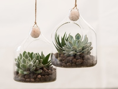DIY : Glass ornaments with succulents by Søstrene Grene
