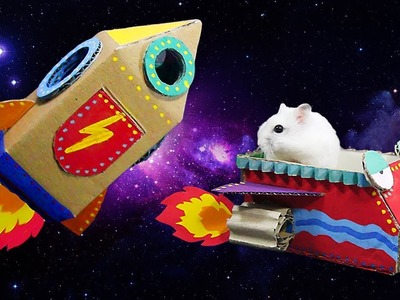 Easy DIY Life Hack- Making Spaceship For Hamster Playing
