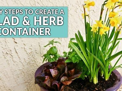 An Easy DIY Salad & Herb Container Garden For Spring. Joy Us Garden