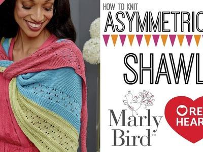 Asymmetrical Knit Shawl with It's a Wrap Yarn
