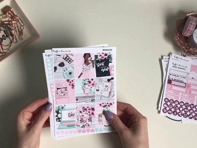 Planner and stickers haul