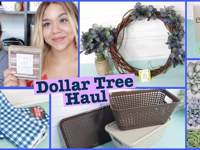 Dollar Tree HAUL July 2018 NEW Storage Bins!