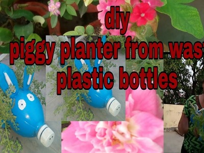 Make piggy planter easily from plastic bottles. DIY.Vijaya's creative garden( Hindi Urdu)