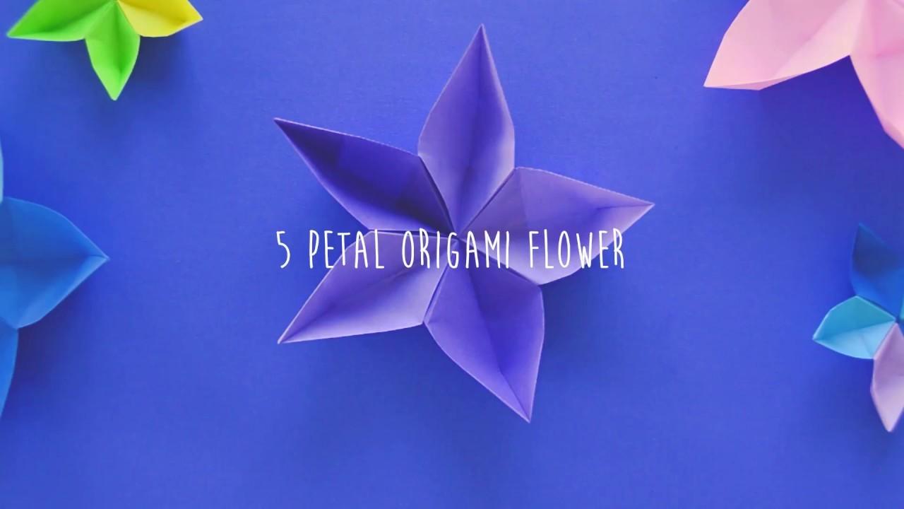 Make 5 Petal Origami Flower Ferienwohnung Wustrow