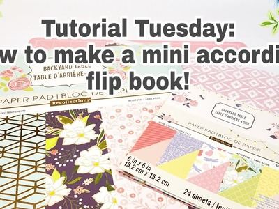 Tutorial Tuesday | How to make a mini accordian flip book | Planning With Eli