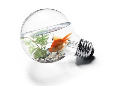 HACKS FOR YOUR LIFE How to create aquarium in light bulb simple method DIY -kpz art and craft