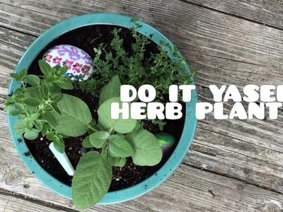 DIY Herb planter (tips&tutorial)