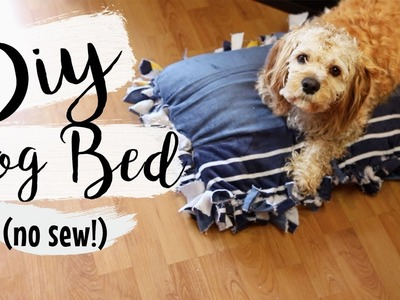 DIY Towel Dog Bed (No Sew) | Easy Pet DIYs