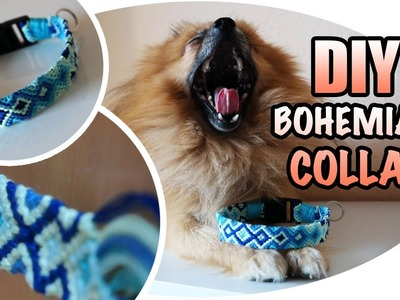 DIY: Ocean inspired bohemian style dog collar