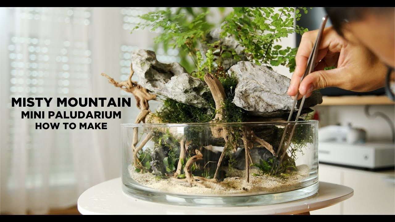 Misty Mountain mini Wabi Kusa - How I made it