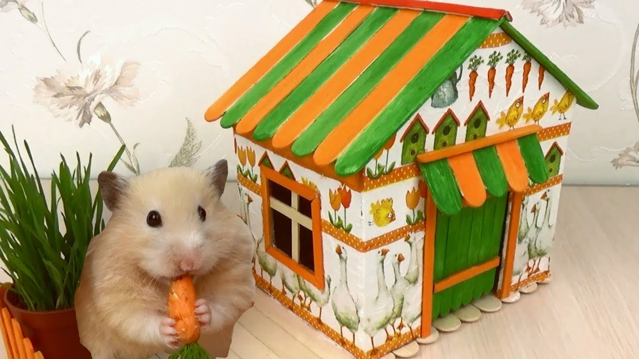 How to Make Village House for Hamster - Popsicle Sticks & Cardboard & Decoupage