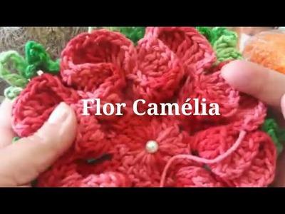 FLOR CAMÉLIA- live Aula