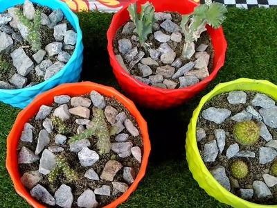 Cactus???? को लगाने का सबसे आसान???? Method. How to grow cactus|| Best evergreen plants