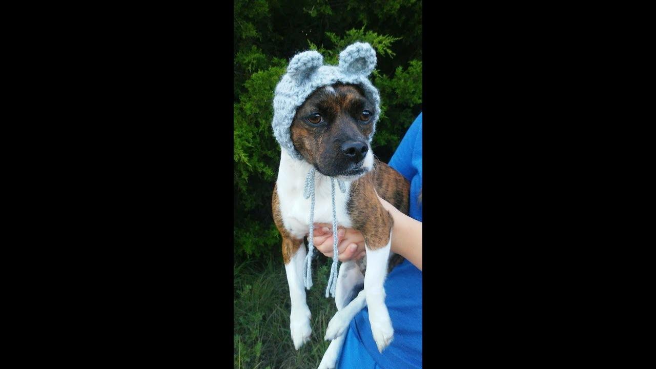 Crochet Dog Bear Cowl Snood Tutorial, Dog Bear Costume Crochet Pattern