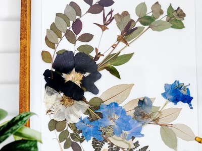 How to Make Pressed Flowers   Sunset