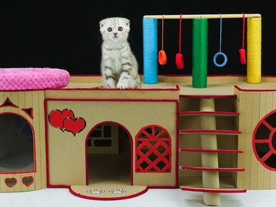 How to Build a Wonderful English House for Little Kitten