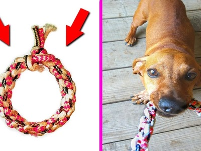 DIY- toy for dogs from old laces | crafts for pets |  DIY kids crafts and games