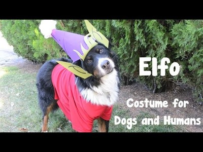 DIY Elfo Costume  for Dogs or Humans - Disenchantment