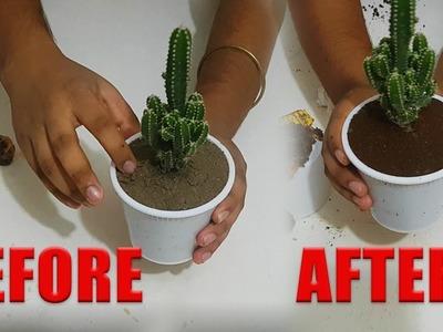 Fairy Castle Cactus Vase DIY with used tea bag