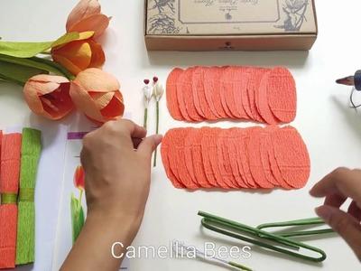 Crepe paper flower kit - Unboxing the tulip paper flower kit