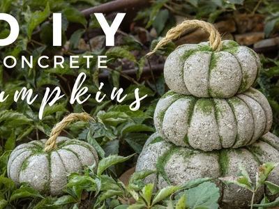 DIY Easy Concrete Pumpkins ! Simple DIY Fall Decor. LIGHTWEIGHT - Hypertufa