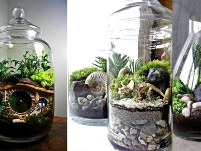 Creative Succulent Terrariums ideas | Easy DIY Glass Terrariums | DIY Succulent Terrarium Ideas
