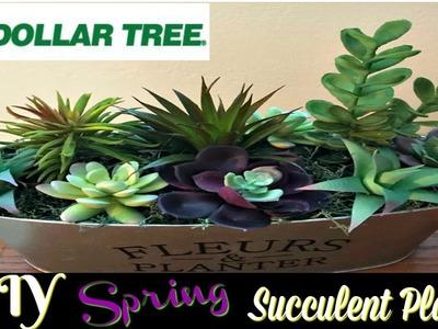 DIY SPRING SUCCULENT PLANTER   DOLLAR TREE DIY   SPRING 2018