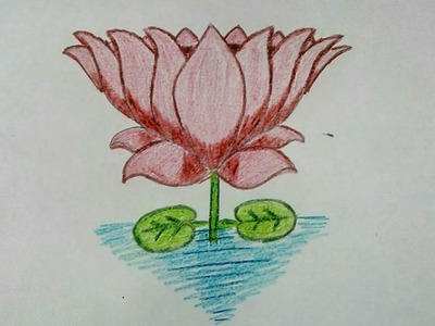 Get Easy Lotus Flower Cartoon Pictures