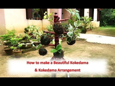 How to make a Beautiful Kokedama & Kokedama Arrangement (with english subtitle)