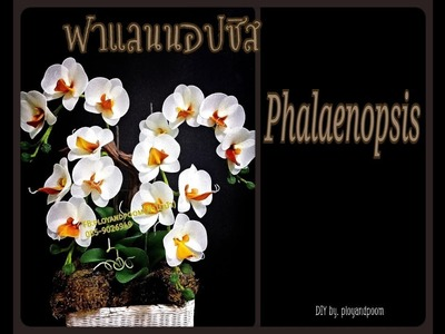 How to make (ฟาแลนนอปซิส (phalaenopsis orchids) nylon.stocking flower by ployandpoom