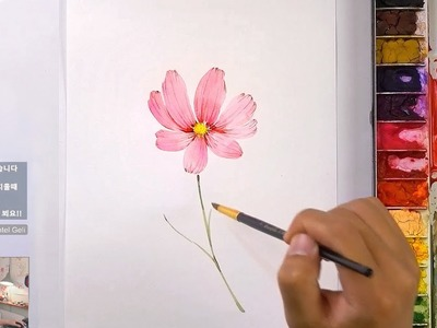 How to Paint a Cosmos Flower in Watercolor - Jay Lee