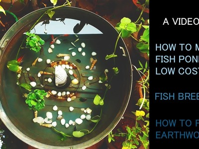 How to Make a Fish Pond at Low Cost | Earthworm Feeding | Fish Care