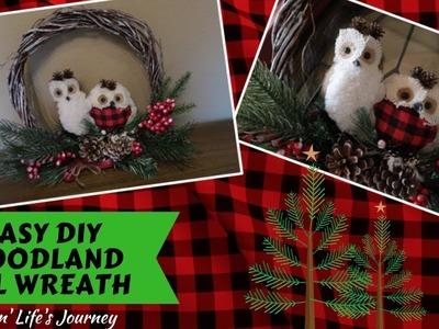 Easy Dollar Tree DIY Woodland Owl Wreath