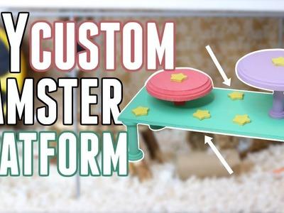 DIY CUSTOM HAMSTER PLATFORM!