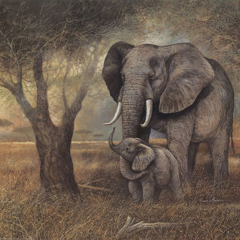 Elephant Mother & Child Cross Stitch Pattern***LOOK***