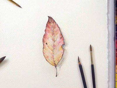 #270 How to Paint an Autumn Leaf in Watercolor  - Jay Lee
