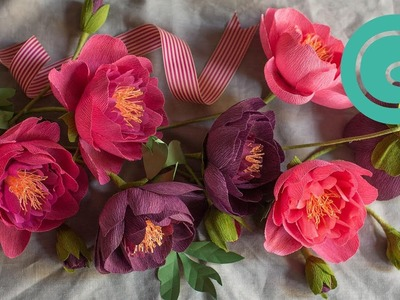 How to Make a Peony Flower with Crepe Paper