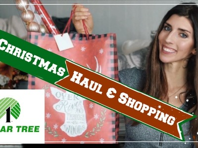 CHRISTMAS DOLLAR TREE HAUL, NEW FINDS & SHOP WITH ME   Momma From Scratch