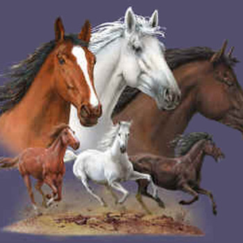 Wild Horses Cross Stitch Pattern***LOOK***