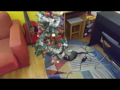 Cat Makes Christmas Tree Fall Playing with Ornament Attached - 945598