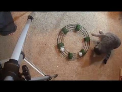 Homemade Cat Round-a-bout Toy - a Dollar Tree DIY