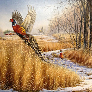 CRAFTS Pheasant Wildlife Cross Stitch Pattern***LOOK***