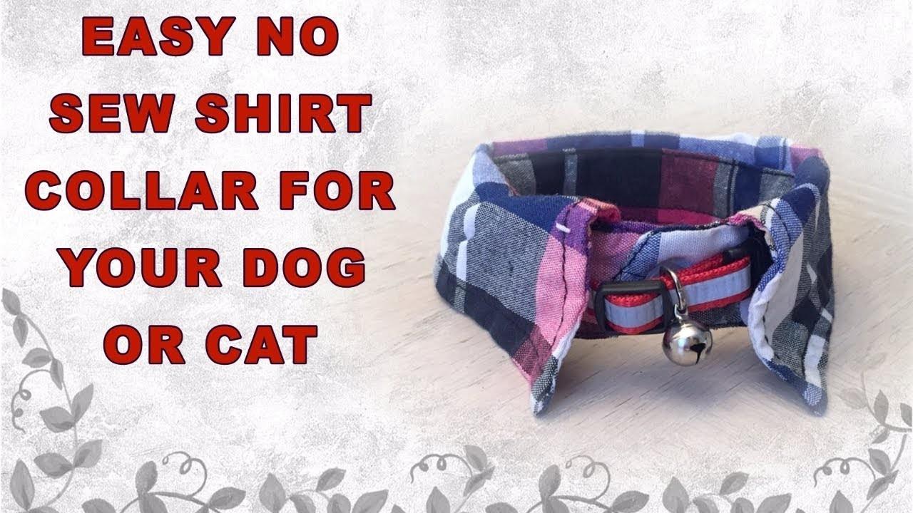 VERY EASY NO SEW DIY DOG.CAT SHIRT COLLAR