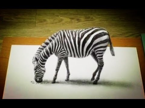 3d Drawing Art Learn To Draw A 3d Zebra In 3 Minutes Easy And