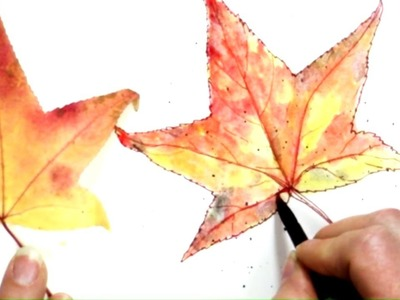 Quick & Easy Inktense Fall Maple Leaf! How to draw & Paint Free Lesson